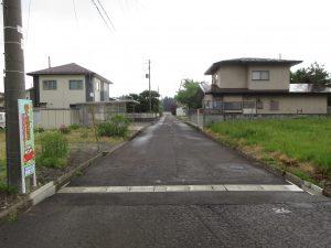 北側道路(周辺)